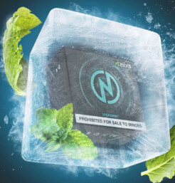 NPod Spearmint - Refrescante